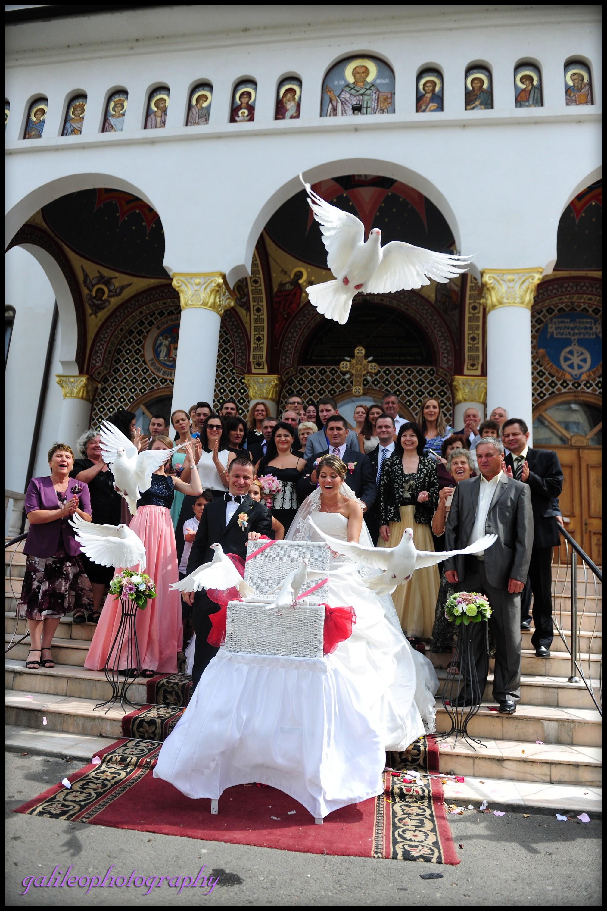 fotografii nunta Sibiu (35)